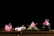 Beautiful spa composition with flowers and candles on black background