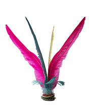 Colorful Feather Chinese Jianz...