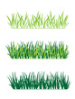 background of green grass