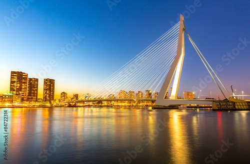 Recess Fitting Swan Erasmus bridge Rotterdam