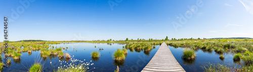 Spoed Foto op Canvas Panoramafoto s Hohes Venn panorama
