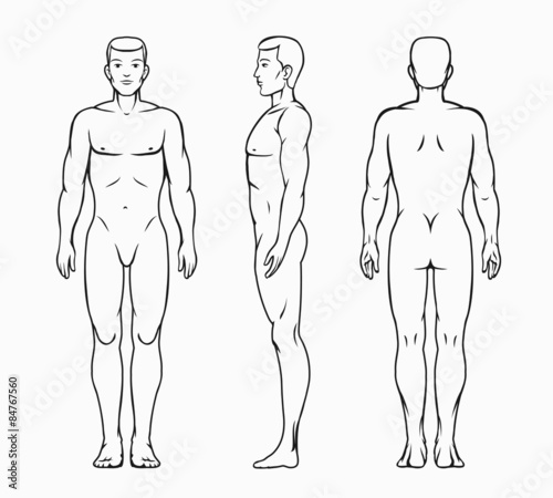 Fotografía  Male body vector illustration