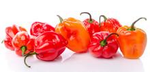 Fresh Habanero Peppers