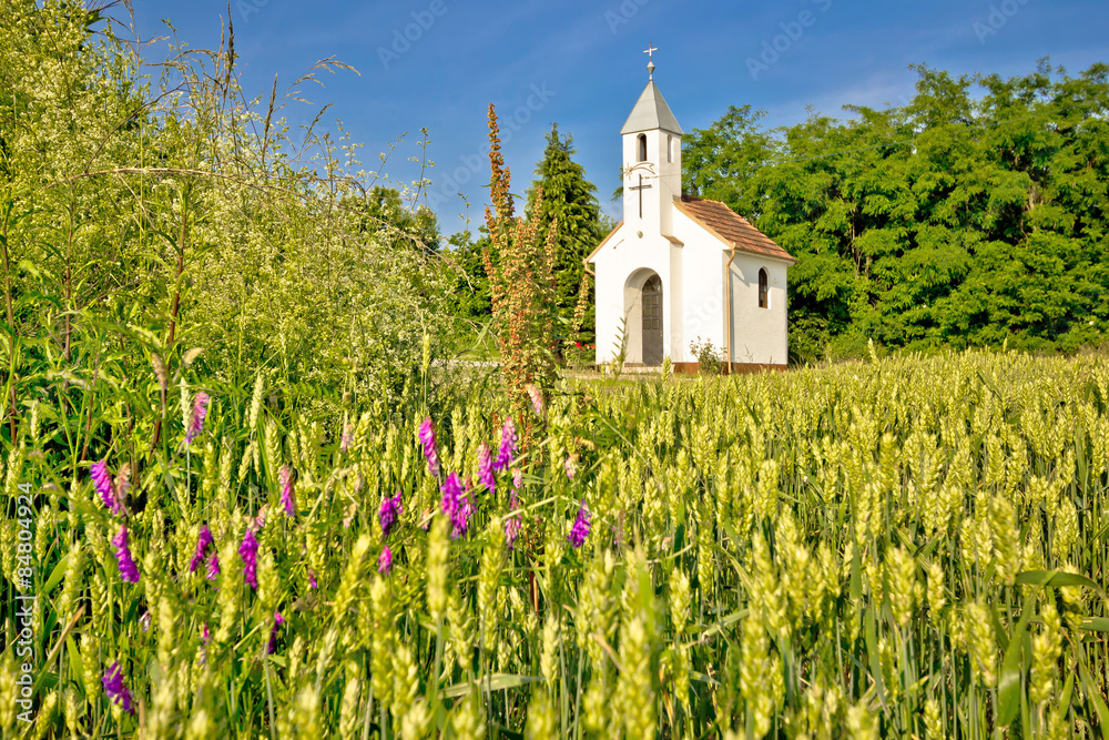 Fototapety, obrazy: Catholic chapel in rural agricultural landscape
