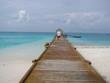 Tropical Island Diving