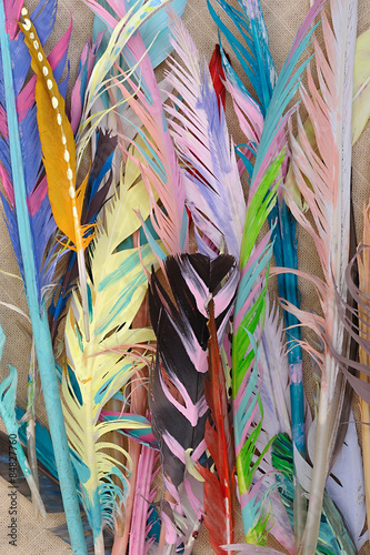 Deurstickers Paradijsvogel Colored Feathers on Sackcloth
