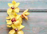 Piękne żółte orchidee na deskach z drewna