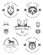 Set of Logos and Badges for Vet Clinic