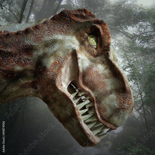 Fototapety, obrazy: Dinosaure