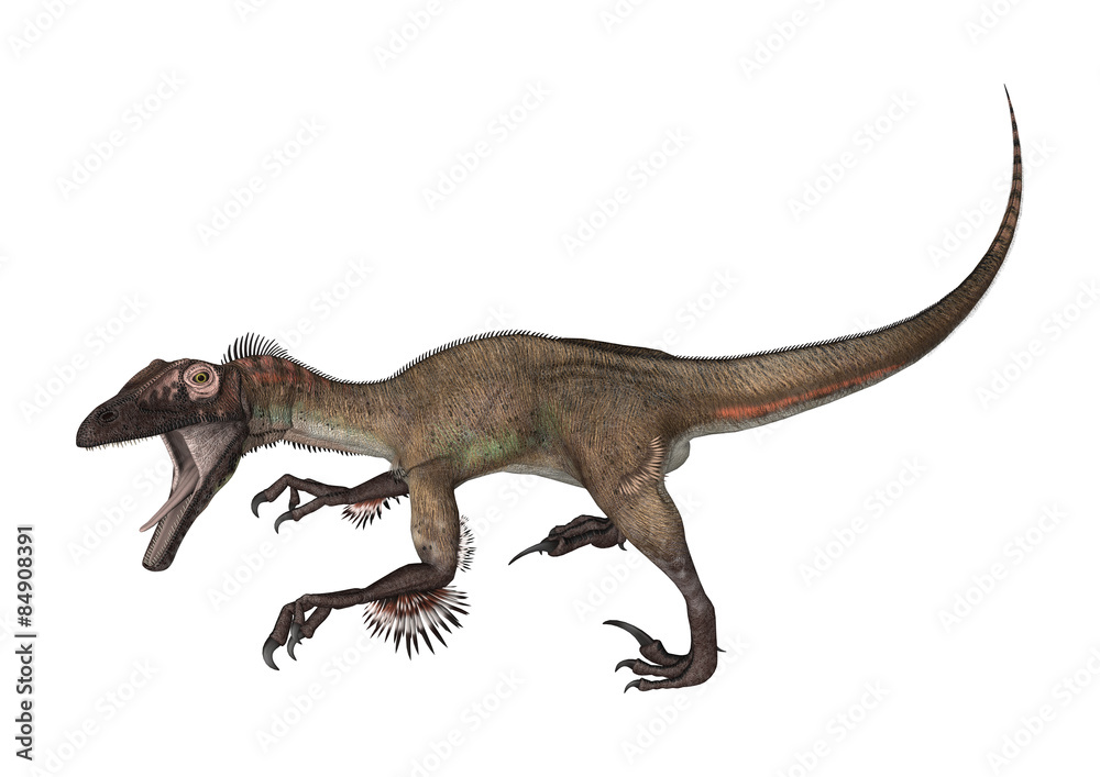 Fotografiet Poster Dinosaur Utahraptor På Europostersse