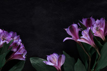 Black Background Decorated With Pink Flowers