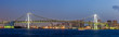 Panorama view of Tokyo bay and rainbow bridge