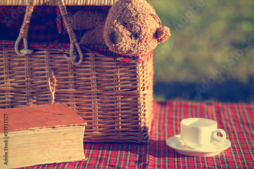 Foto op Canvas Picknick Picnic basket and book on the grass