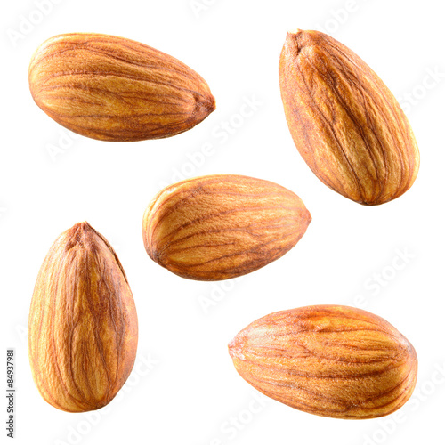 Almonds isolated on white background. Collection. Canvas Print