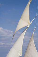 Fototapeta Żagle Sailing boat