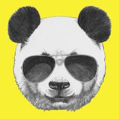 FototapetaHand drawn portrait of Panda with sunglasses. Vector isolated elements.