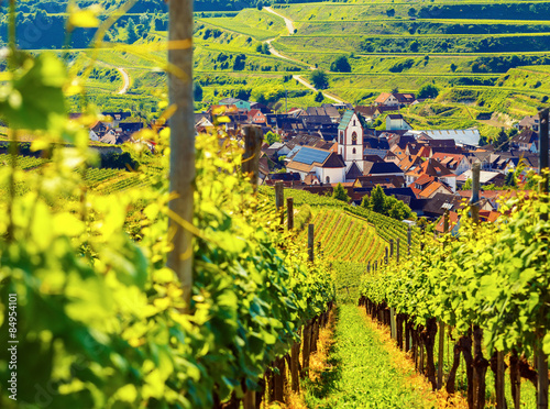 Poster Geel Beautiful scenic mountain landscape with vineyards and old picturesque town in Germany, Black forest, Kaiserstuhl.