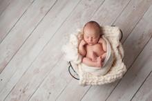 Newborn Baby Sleeping In A Wire Basket