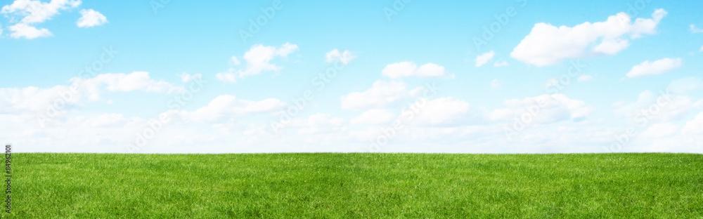 Fototapeta Green field and blue sky