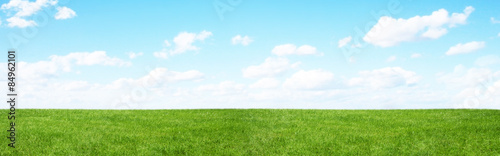 Photo sur Aluminium Herbe Green field and blue sky