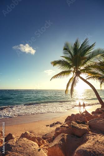 Fotografie, Obraz  Palm trees on the tropical beach