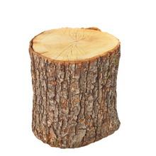 Oak Stump, Stump Log Fire Wood Isolated On White Background