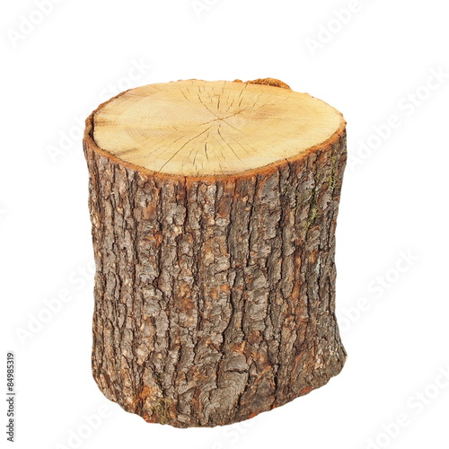 Fotografia  oak stump, stump log fire wood isolated on white background