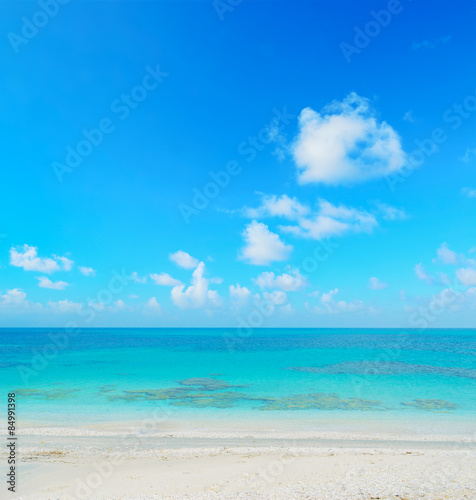 Foto auf Gartenposter Strand white and blue seashore