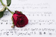 Red rose and sheet music.