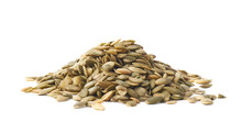 Pile Of Pumpkin Seeds Isolated