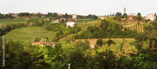 Papiers peints Vignoble paesaggio trevigiano