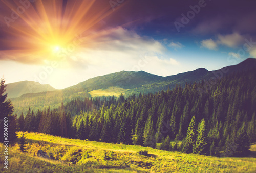 obraz dibond Beautiful summer mountain landscape at sunshine.