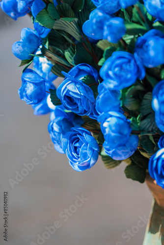 Fototapety, obrazy: blue flowers
