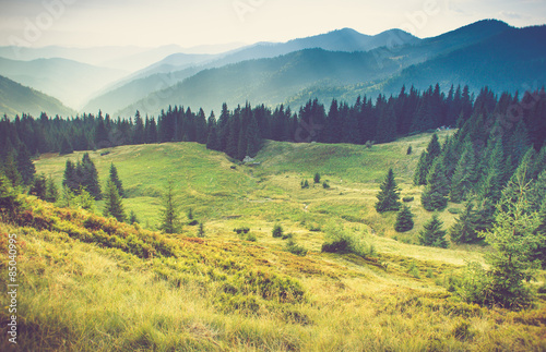 Canvas Prints Orange Beautiful summer mountain landscape.