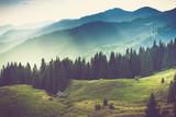 Piękny letni krajobraz górski. - 85041102
