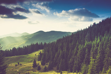 FototapetaBeautiful summer mountain landscape.