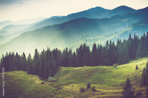Cadres-photo bureau Montagne Beautiful summer mountain landscape.