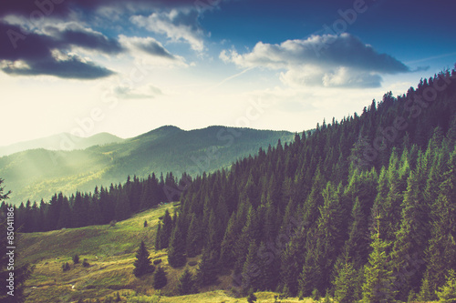 Photo sur Toile Aubergine Beautiful summer mountain landscape.