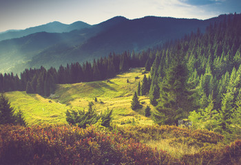 FototapetaBeautiful summer mountain landscape at sunshine.