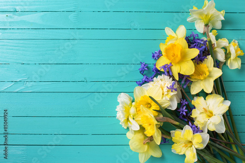 Background With Bright Colorful Yellow And Blue Spring Flowers On