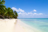Plaża z palmami na Dominikanie
