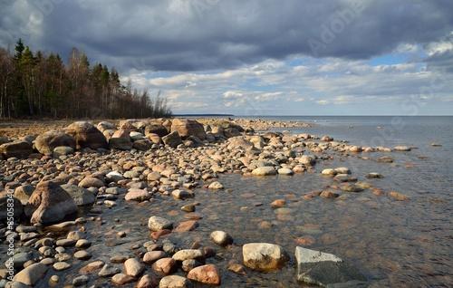 Fotografie, Obraz  Ladoga Lake shore