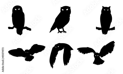 In de dag Uilen cartoon Owl Bird Silhouette