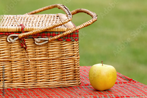 Staande foto Picknick Picnic basket and book on the grass