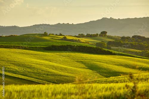 Foto auf Gartenposter Hugel Tuscany hills. Italy. May.