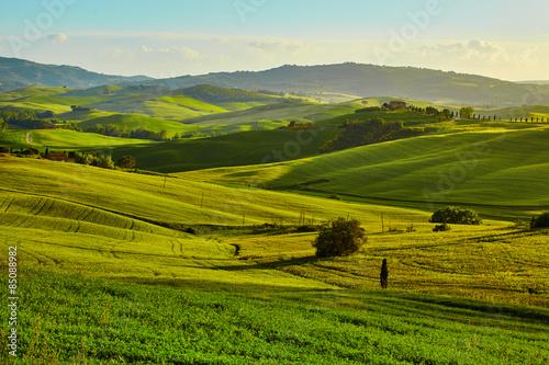 Foto op Aluminium Heuvel Tuscany hills. Italy. May.