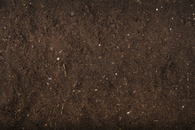 Brown Background Of Soil For G...