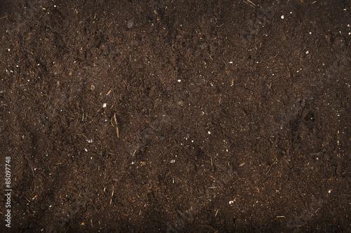 Fototapeta brown background of soil for gardening studio shoot obraz