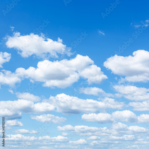 Aluminium Prints Heaven many little white clouds in summer blue sky