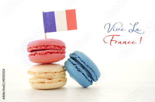 Happy Bastille Day Party Macarons Canvas Print